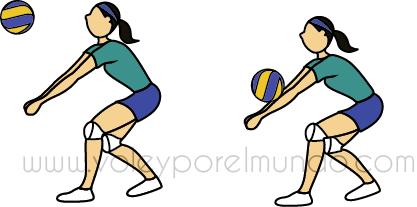 Tecnicas basicas del voleibol resumen